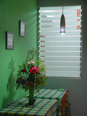 China Clear Adjustable Glass Shutter Window Vertical Blinds For Commercial distributor